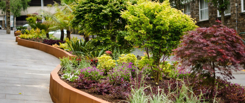 Dise o y ejecuci n de espacios verdes p blicos xard n senra for Disenos de estanques para jardin