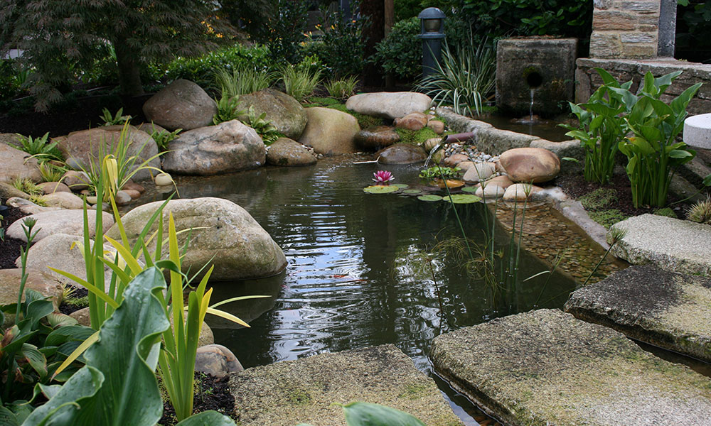 Dise o y ejecuci n de piscinas y estanques por xard n - Estanques en el jardin ...